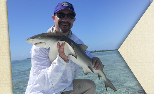Sand shark caught in The Bahama's.  Was a catch and release.  September, 2013.